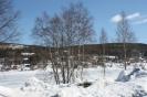 Wizyta uczniów LZK w Szwecji :: obraz 22