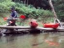 Spływ kajakowy :: obraz 50